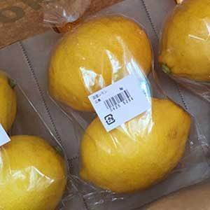 国産のレモンを求めて